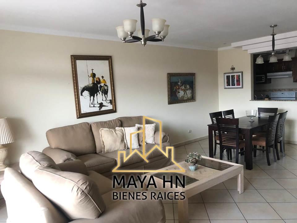 Alquiler de apartamentos Paseo San Ignacio