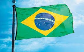 PROGRAMA DE BECAS DE DOCTORADO EN BRAZIL