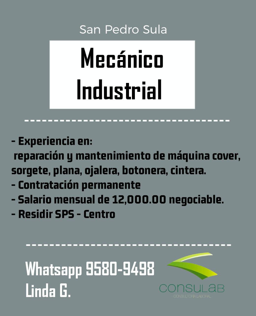 Mecánico Industrial en S.P.S.