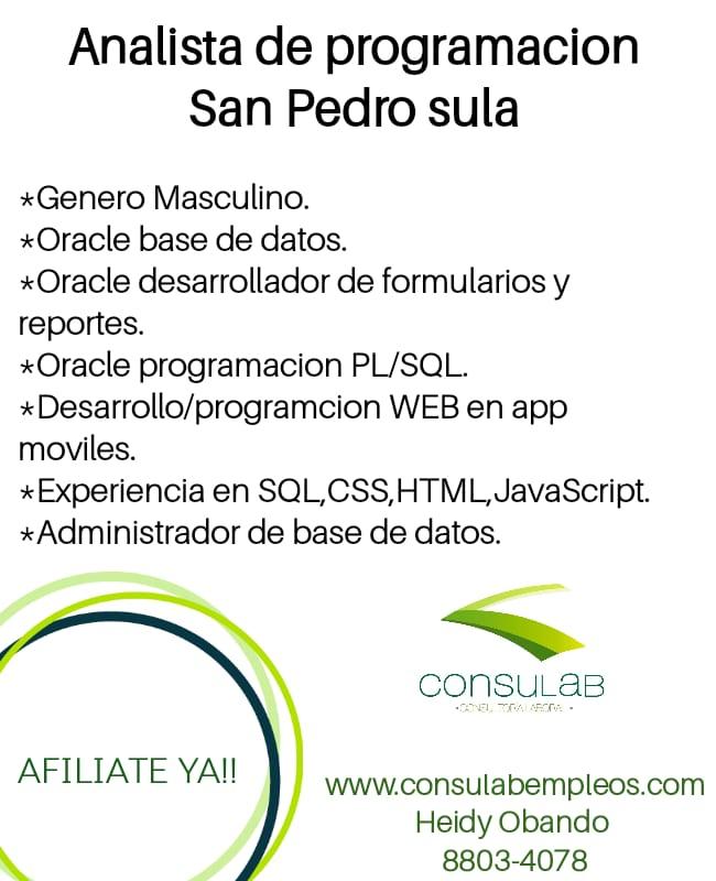 Analista de programacion en S.P.S.