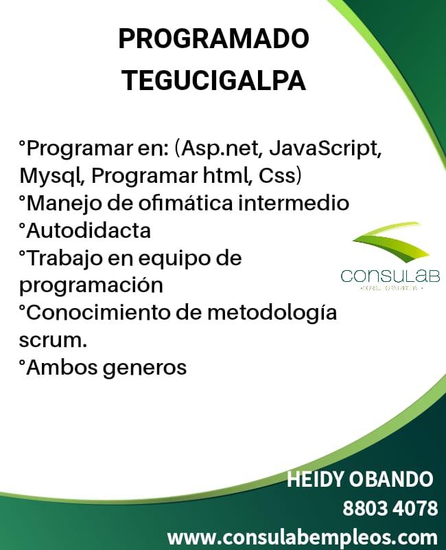 Programador en Tegucigalpa