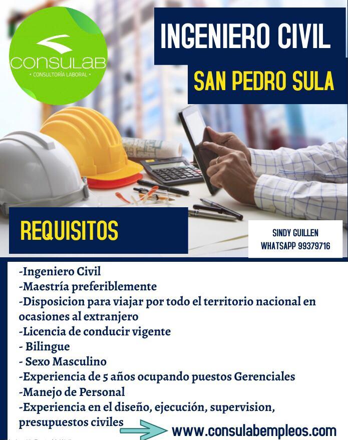 Ingeniero Civil en S.P.S.