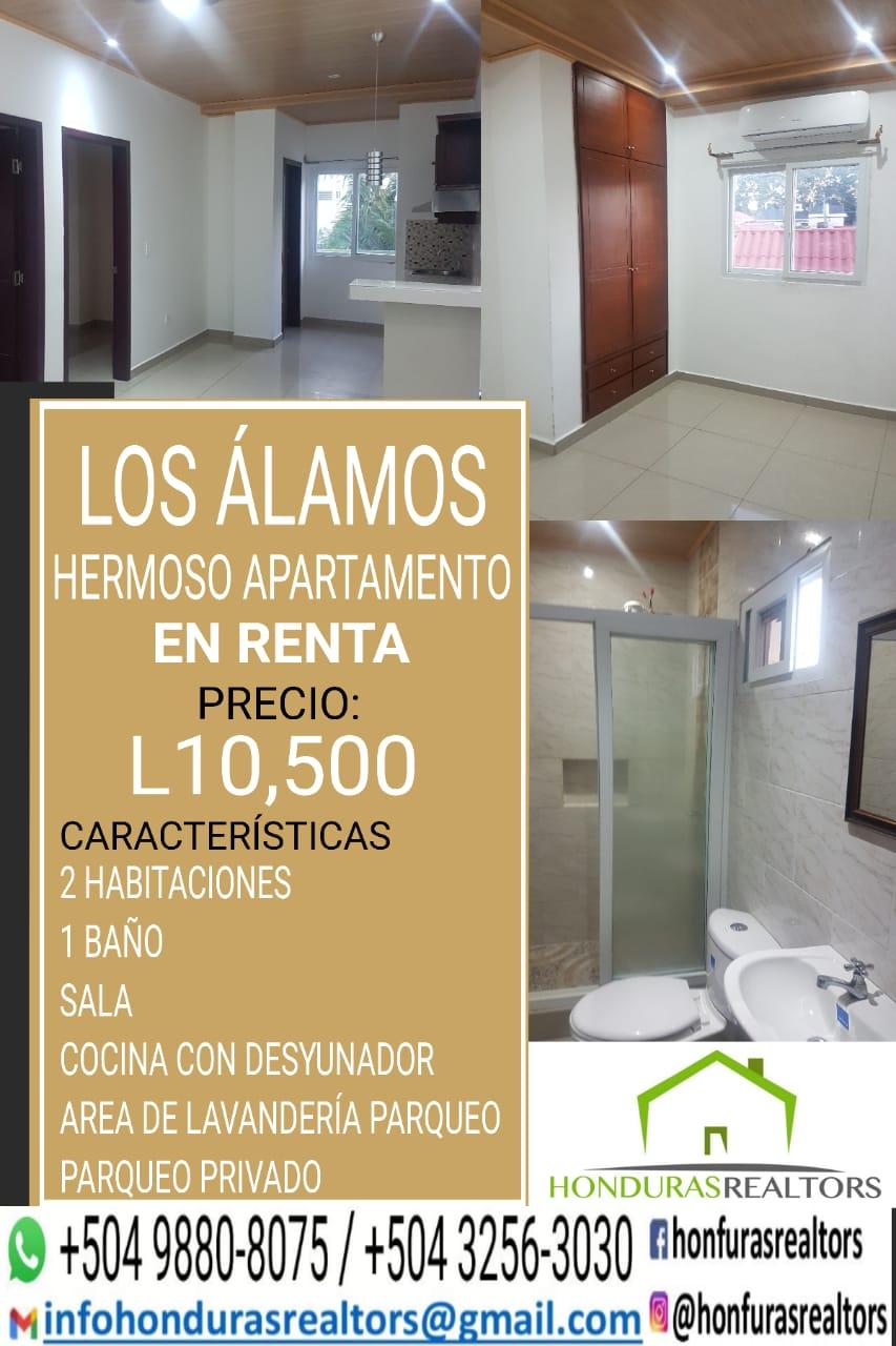Apartamento en Renta Los Alamos