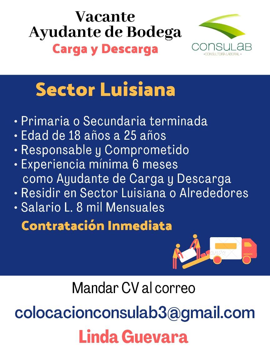 Auxiliar de Bodega / Carga y Descarga